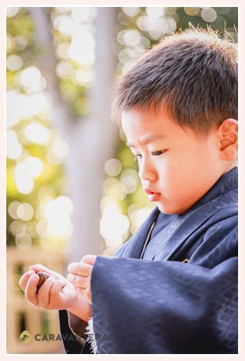 七五三 3歳の男の子 ブルーの羽織袴