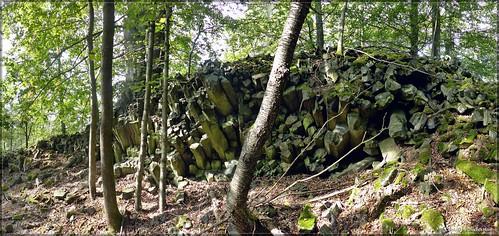 Der Schlangenstein auf dem Berg Čachnov bei Sonneberg
