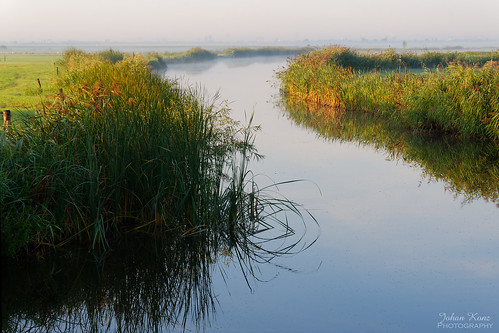 mist fog water watercourse serenity reed landscape waterscape outdoors nopeople early morning sunrise purmerland waterland netherlands nikon d7500 creek field horizon reflection grass elitegalleryaoi bestcapturesaoi aoi