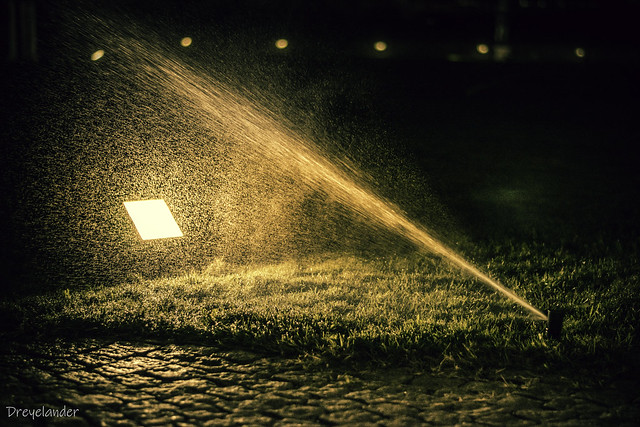 Sprinkler in action