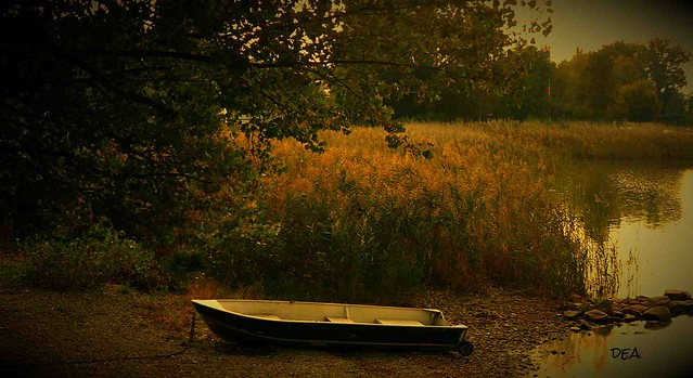 the boat in the fall