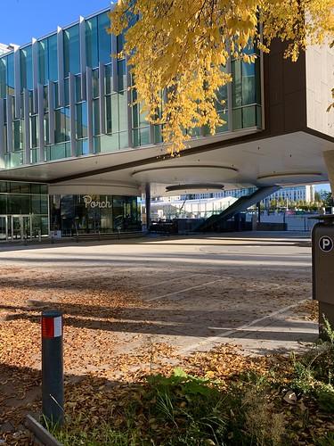 UBC in autumn