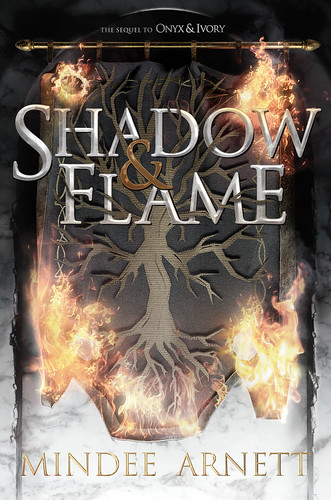 Shadow & Bone cover. From Write This: Author Mindee Arnett on Writing, Road Maps, and Character Development