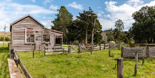 creek bridge bush slideshow facebook 2019tour relic flickr nztour dargaville northlandregion newzealand