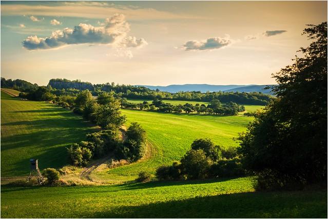 Grüne Heimat