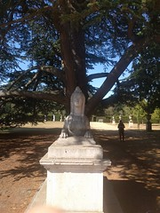 Chiswick Gardens, London