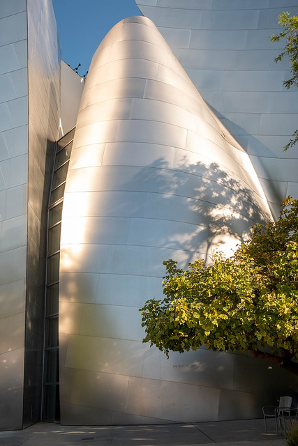 Disney Hall Detail