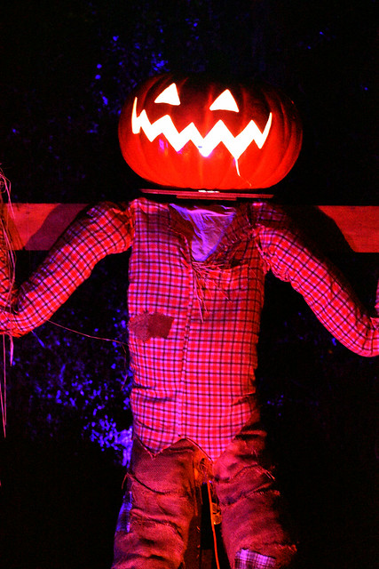 Jack's Pumpkin Glow - Washington, DC (49)