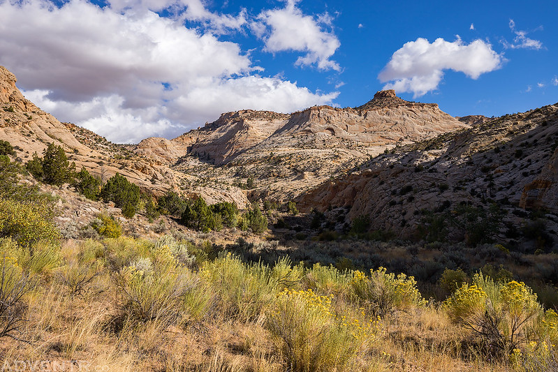 Upper Escalante River Canyon