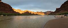last canyon light
