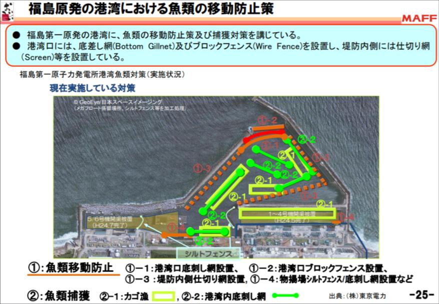 福島核電臨海港灣,周圍與底部設置各種漁網圍捕或防止魚移動。