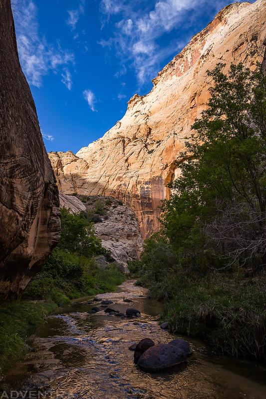Mamie Creek