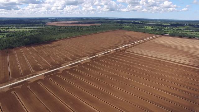 Freesturbaväli / Peat milling field