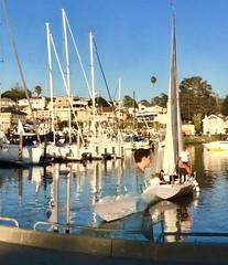 Cruising the Harbor