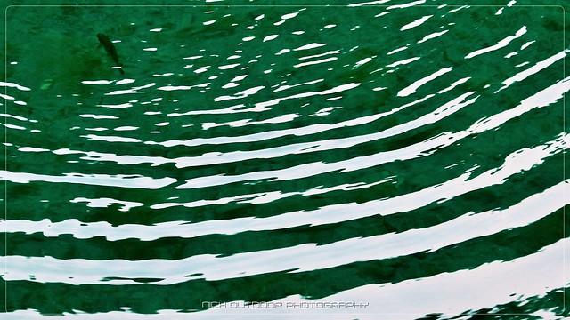 Cerchi nell'acqua