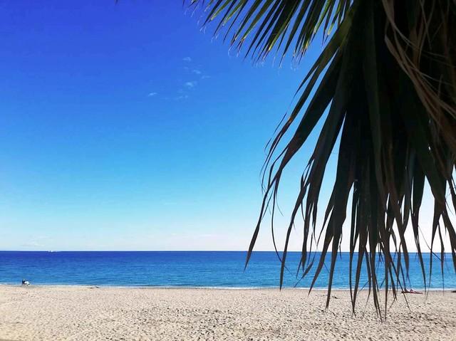 Varazze, Caraibi