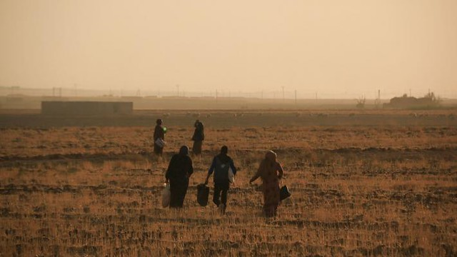 syria-turkey-fleeing