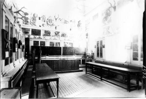 Clase de Ciencias Naturales del Instituto Lorenzana. Fondo Rodríguez, Archivo Histórico Provincial, Junta de Comunidades de C-LM, signatura [ALBUM-1-57]
