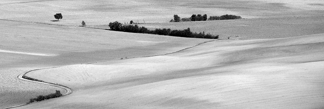 Val d'Orcia b/n