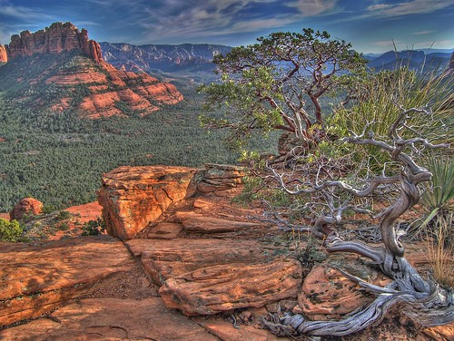 Gorgeous landscape in Sedona, Arizona. From  Top 5 Most Overlooked Travel Destinations In The United States