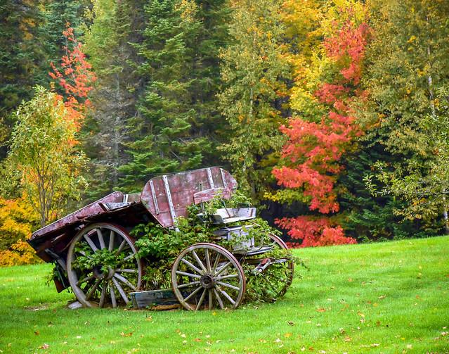 Autumn Vintage Wagon