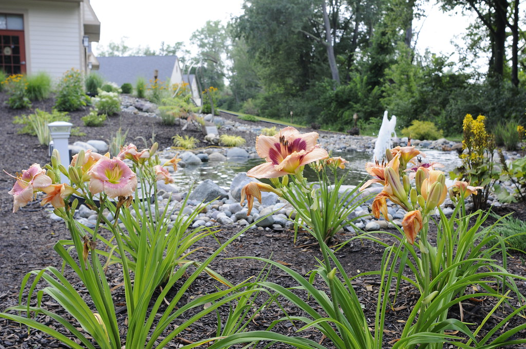 Spring at Hospice of Lenawee