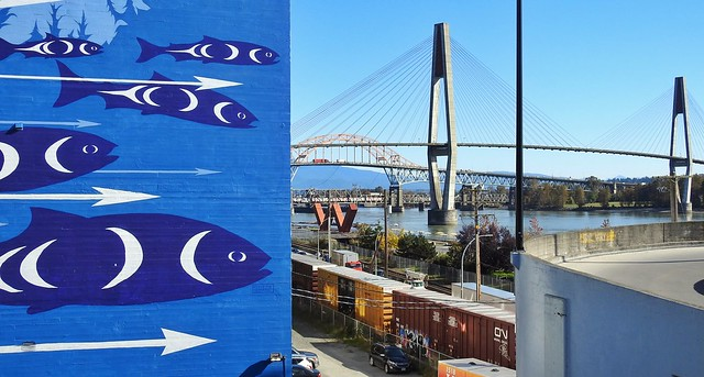 Salmon (wall mural) by the Fraser (river)