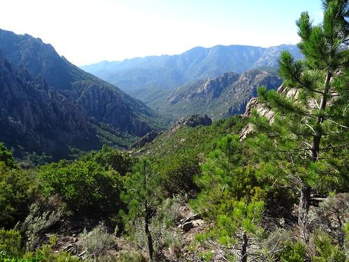 Bocca di Monte Bracciutu : la vallée vue depuis le col