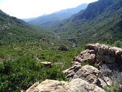 Depuis le chemin de Paliri (HR31) : la vallée de la Figa Bona