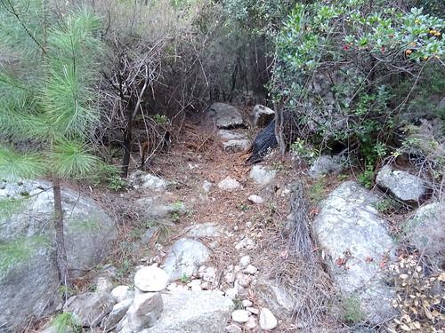 L'entrée du sentier RD du ruisseau de Peralzone