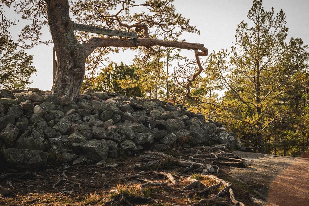 Utflykt till Rönninge by_DSF1059