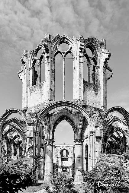 Abbaye Notre-Dame d'Ourscamp - monochrome