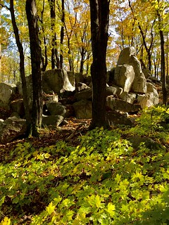 Midwestern Quartzite Monadnock (Wisconsin's Rib Mountain)