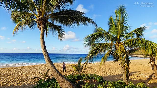 A Morning on the Beach - Sandy Beach - Oahu, Hawaii