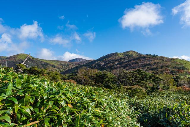 笹の防風道、、南月山の左奥に茶臼岳