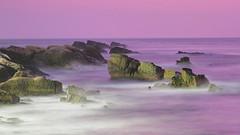 sea shore-19035  (由  imageborder(poetry&humanity)