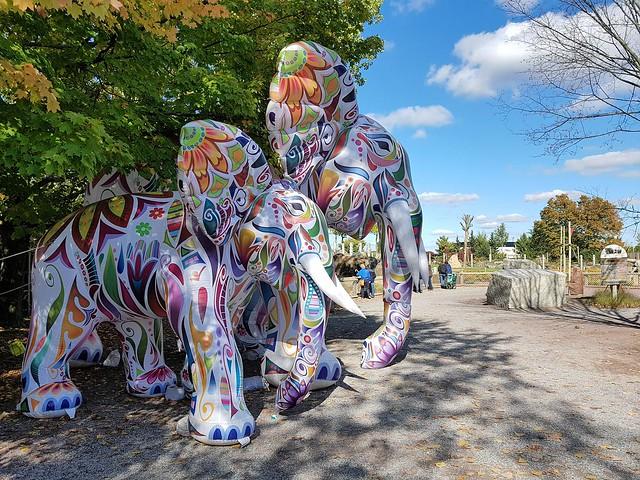 Deux Éléphants Gonflables Au Zoo. 2019 10 05 14:01.35