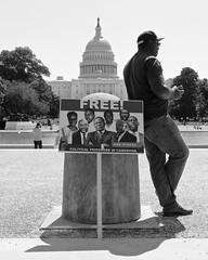 Free!  (由  Mondmann