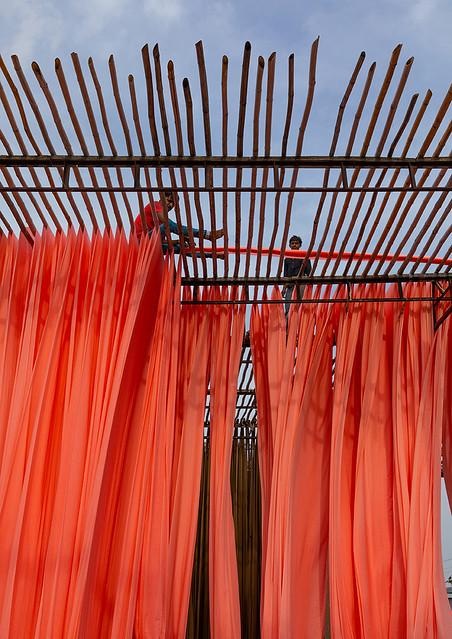 Indian workers drying orange sarees, Rajasthan, Sanganer, India