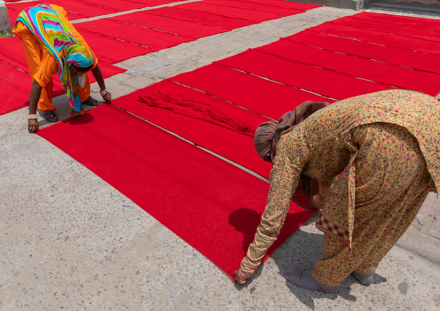 Indian women drying red saris in the street, Rajasthan, Jodhpur, India