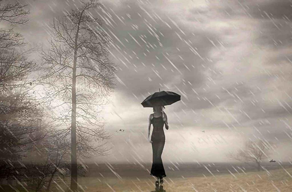 quiet rain