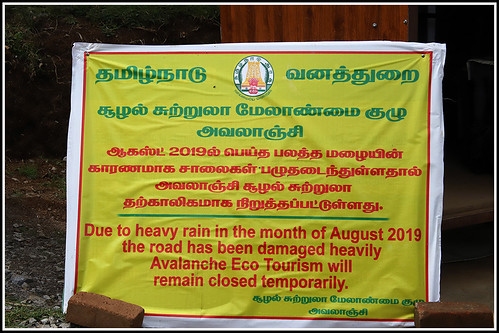 avalanche ooty nilgiris tamilnadu india canoneos6dmarkii tamronef28300mm