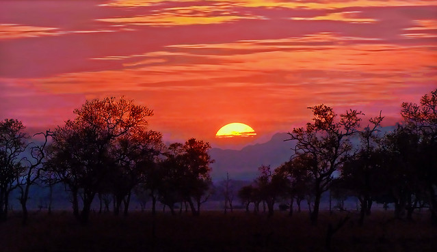 AFRICA -  Zambia at sunset