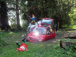 Woodland Car Crash