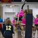 Volleyball SC4 vs Schoolcraft Pink Game03