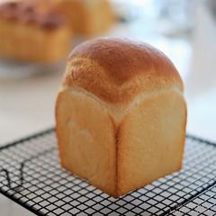 マスカルポーネ食パン 20191008-DSCT8993 (2)