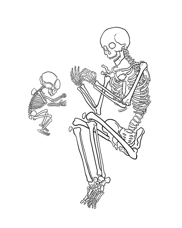 A line drawing of an infant skeleton and the skeleton of an adult female. Both are laying on their sides and facing each other