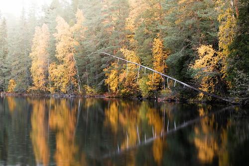 suomi finland hyyppää hyyppäänvuori autumn fall syksy landscape maisema nature forest trees colors pond water reflections outdoor amazing europe morning hike fog mist overcast d750 nikon 70210mm tamron