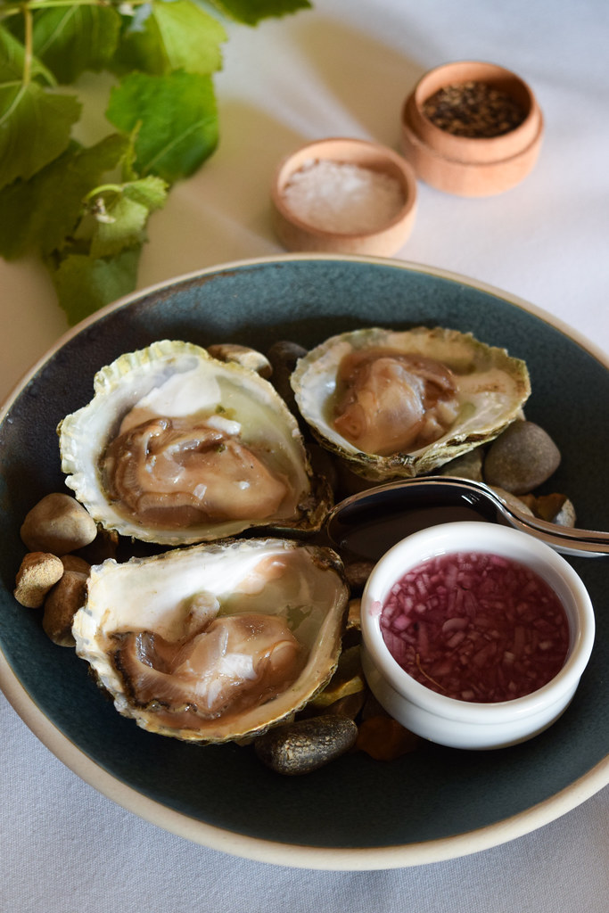 Native Oysters at Squerryes Vineyard and Winery