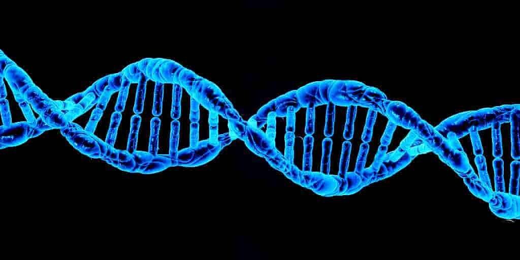 une-nouvelle-méthode-génomique-pour-trouver-la-cause-de-maladies-rares